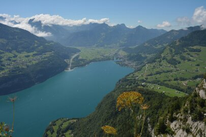 blog-boerderijwerk-zwitserland1
