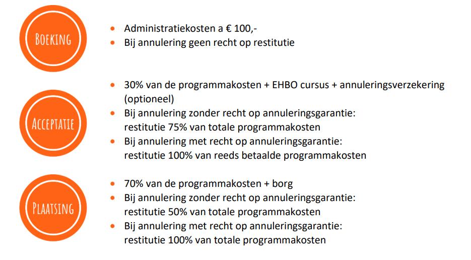 Au pair - betalingswijze programmakosten2