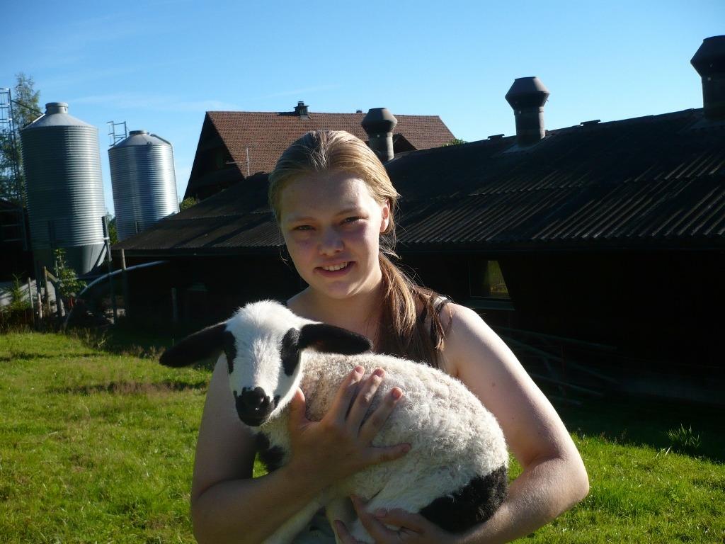 Travel Active - Zwitserland - boerderij - geit