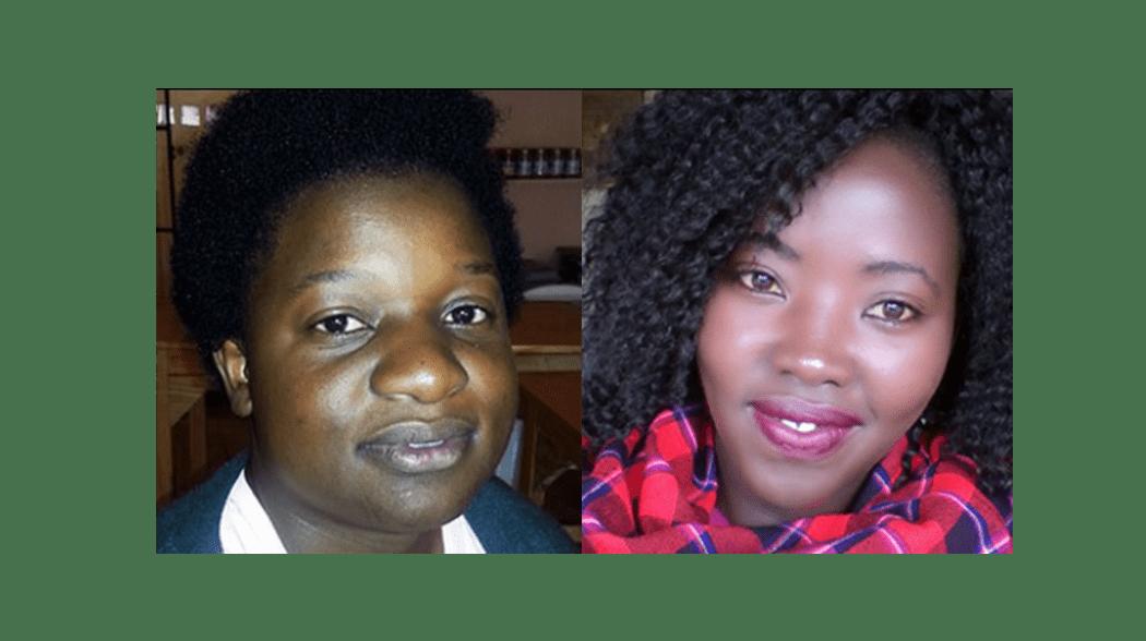 Vrijwililgerswerk - samenwerkingspartners - The Green lion afrika